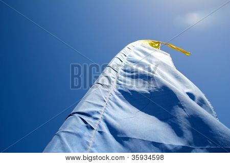 Surfer's flag