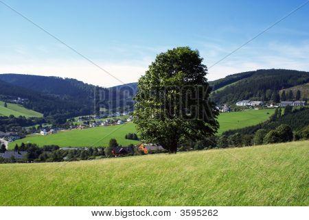 German Nature.