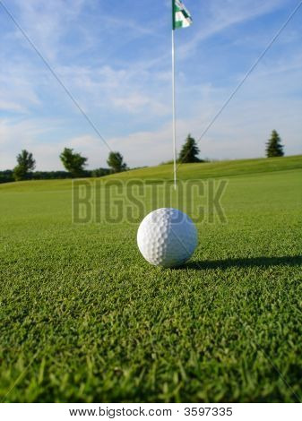 Golf Ball On Course Portrait
