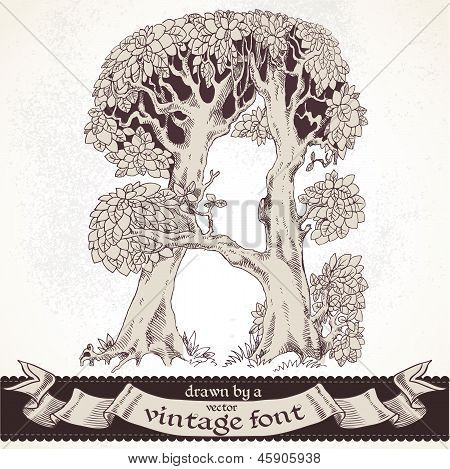 Fable forest hand drawn by a vintage font - A
