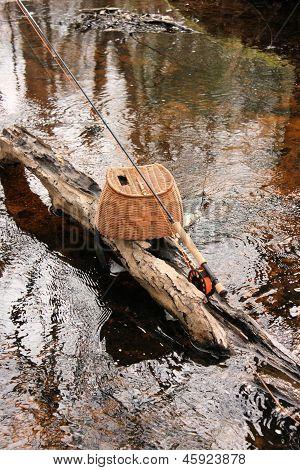 Rod On A Log