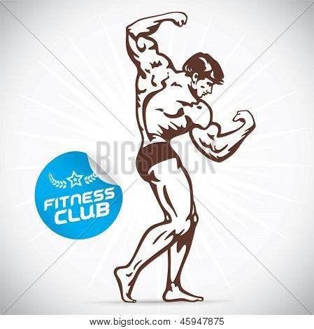 Bodybuilder Model Illustration