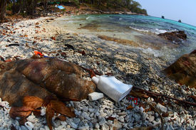 picture of polution  - Coast of tropical sea poluted with plastic - JPG