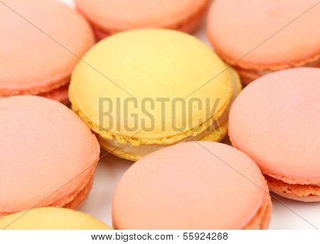 Seven various macaron cakes.