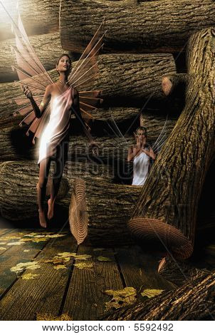 Fairies in the Woodpile