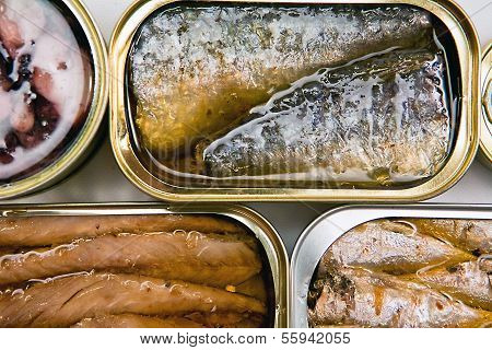 Tin cans of aluminum of different size of sardines, mackerel in olive oil