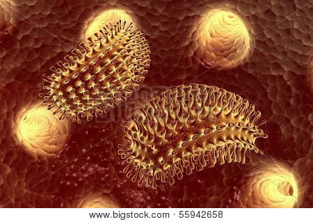 Digital illustration of rabies virus