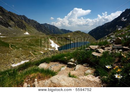 Mountain Lake, Walking Path And Flowers
