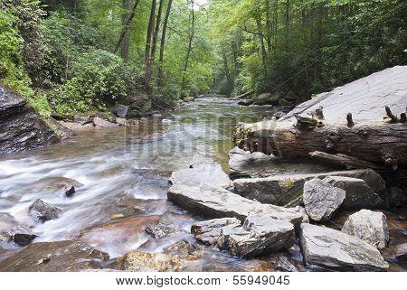Looking Glass Creek