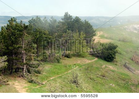 Windbreak in a high mountain