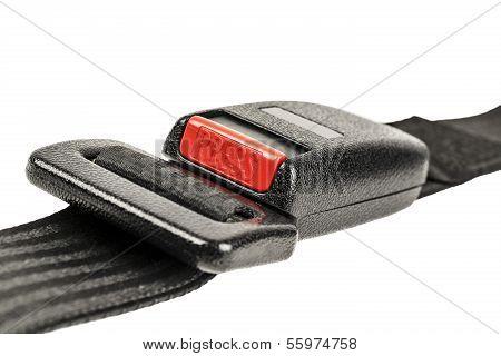 Car Safety Belt