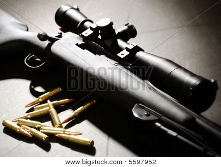 Sniper Rifle and bullets