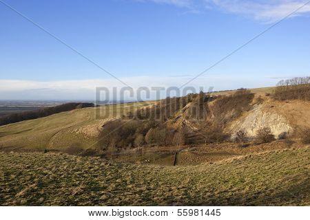 Rolling Winter Landscape