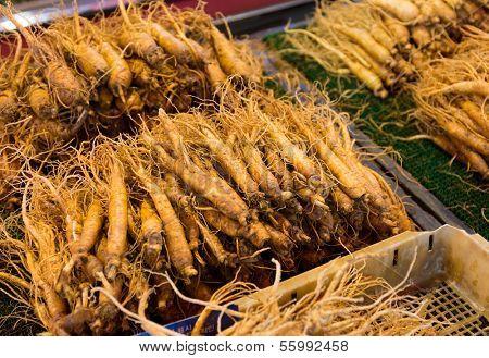 Fresh Ginseng in food market