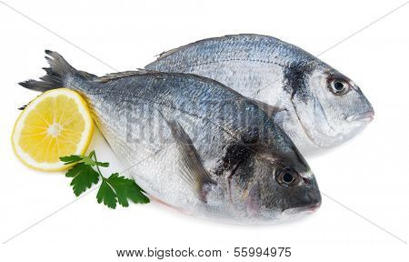 Fresh sea bream with slice of lemon and parsley isolated on white background
