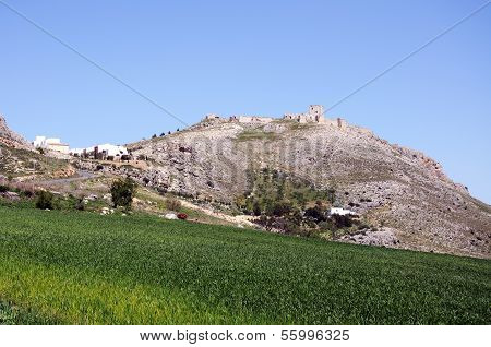 Corn fields with castle on hill, Teba, Spain.