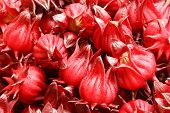 foto of sorrel  - Roselle Fruits In A  Basket On The Market.