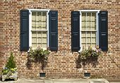 picture of century plant  - Shuttered windows decorated with flowers and plants in the brick wall of an eighteenth century house - JPG