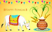 foto of kalash  - illustration of Happy Pongal greeting background - JPG