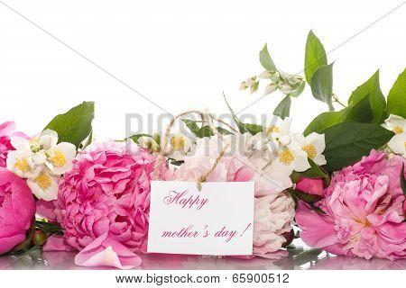 Beautiful Blooming Peonies