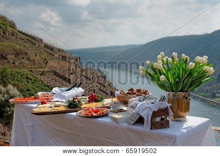 Lunch at the vineyard, serene scenery, Moselle river, Germany