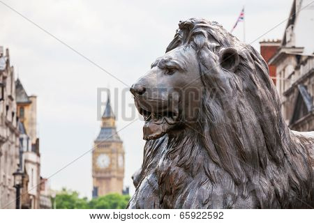 Lion In Trafalgar Square. London, England