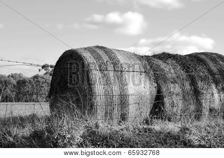 Large Hay Bales In Countryside At Barossa Valley, South Australia. Black And White.