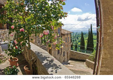 Roses on a balcony, cityscape of San Gimignano and Tuscany landscape in background