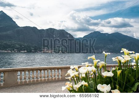 Gardens By The Lake