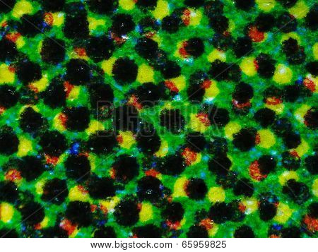 Halftone Micrograph
