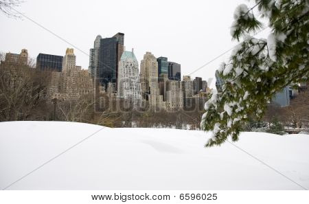 New York City skyline and Central Park after snow