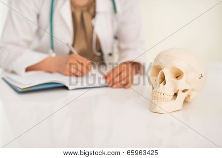 Closeup On Human Skull And Medical Doctor Woman Working In Backg