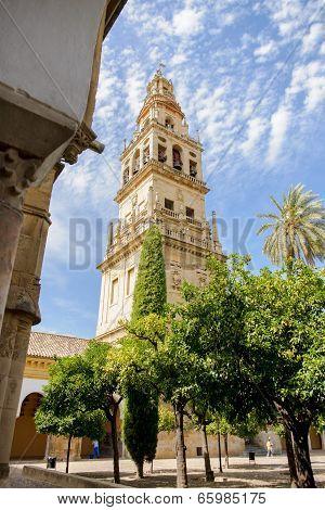 Cordoba Mosque & Cathedral, La Mezquita