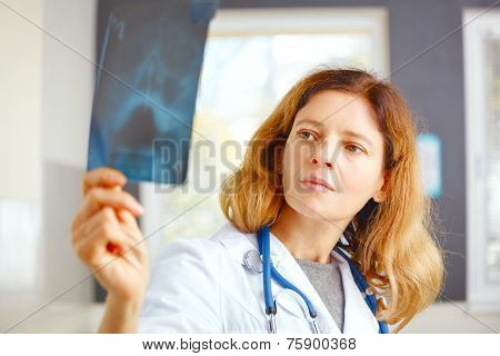 Family Doctor Examining X-ray Picture.