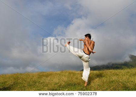 young man do kungfu - taichi outside