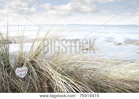 Lonely Wooden Heart On Beach Dunes