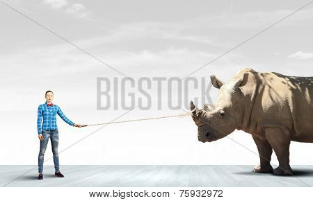 Young woman in casual holding rhino on lead
