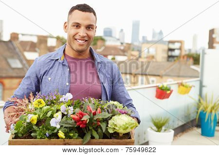 Man Holding Box Of Plants On Rooftop Garden