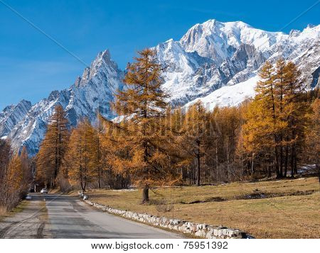 Mountain road in fall. In background larch trees and the snowy peaks of Mont Blanc - Courmayer, Val d'Aosta, Italy, Europe.