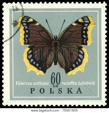 Vintage  Postage Stamp. Butterfly Vanessa Antiopa.
