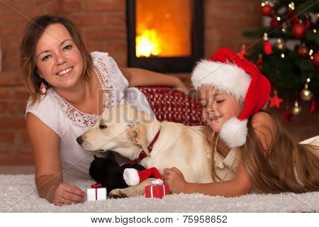Christmas with the family pets - enjoying the warmth of a fireplace