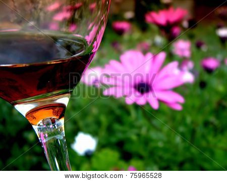 Sipping Glass of Cabernet Red Wine Garden Flower Theme in Spring Time