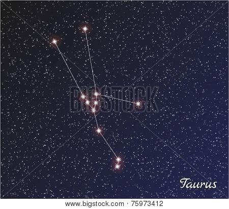 Constellation Taurus