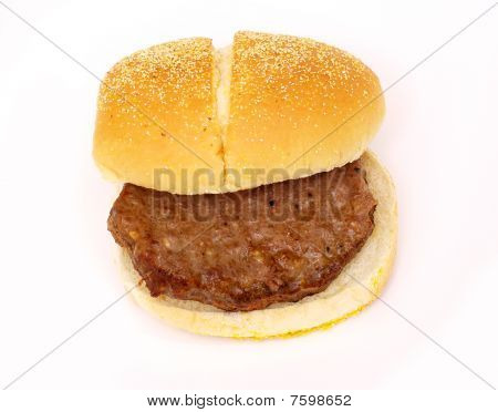burger on a bun