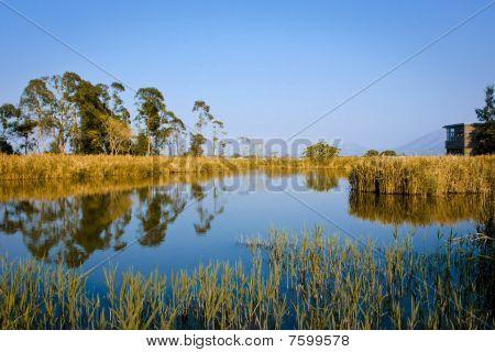 Hong Kong-Wetland-park