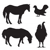 image of winged-horse  - Silhouettes horses dove and a rooster vector - JPG