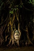 stock photo of status  - The famous Buddha Head Status in Tree Roots at Wat Mahathat - JPG