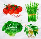 pic of cherry  - Vegetables set drawn watercolor blots and stains with a spray lettuce - JPG