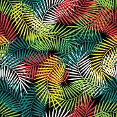 pic of tropical plants  - Seamless tropical pattern with stylized coconut palm leaves - JPG