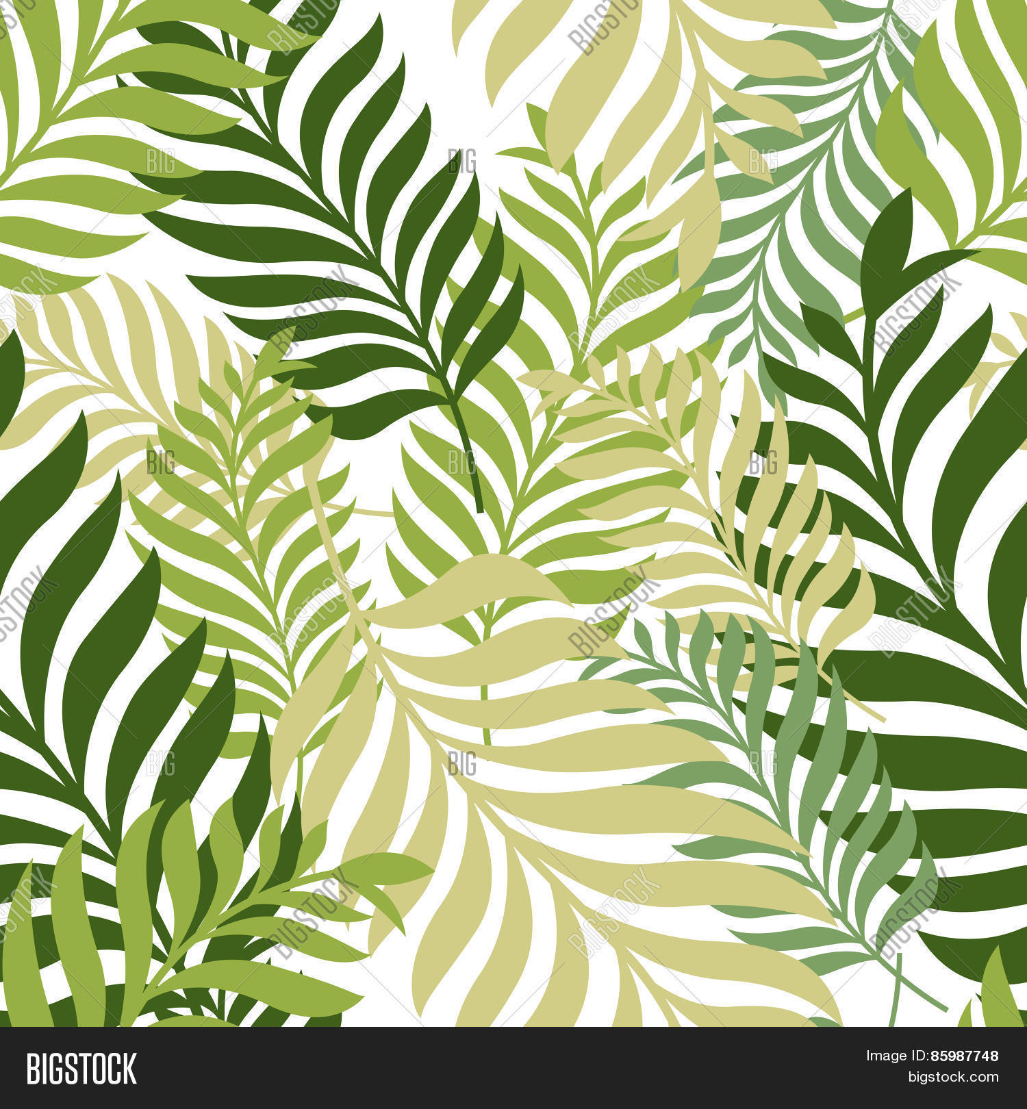 green palm tree leaves vector vector u0026 photo bigstock